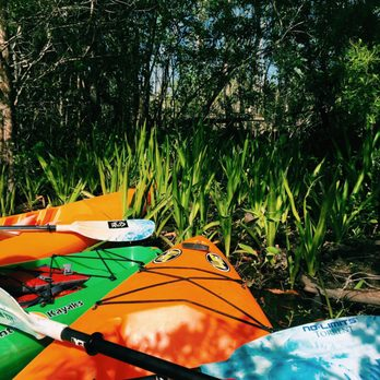 Paddle All Wet Sports Best In Jax